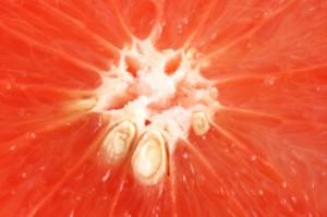 grapefruit seed extract benefits