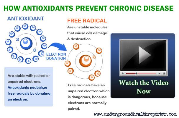 Infographic of Free Radicals