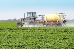 pesticides increasing allergies