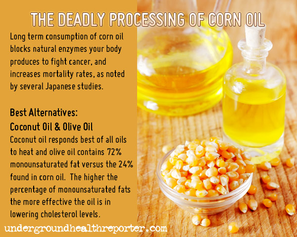 Deadly Cancer Causing Ingredients Infographic