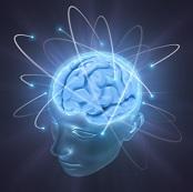 brain_activity