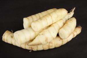 Fresh harvested organic arrowroot tubers.