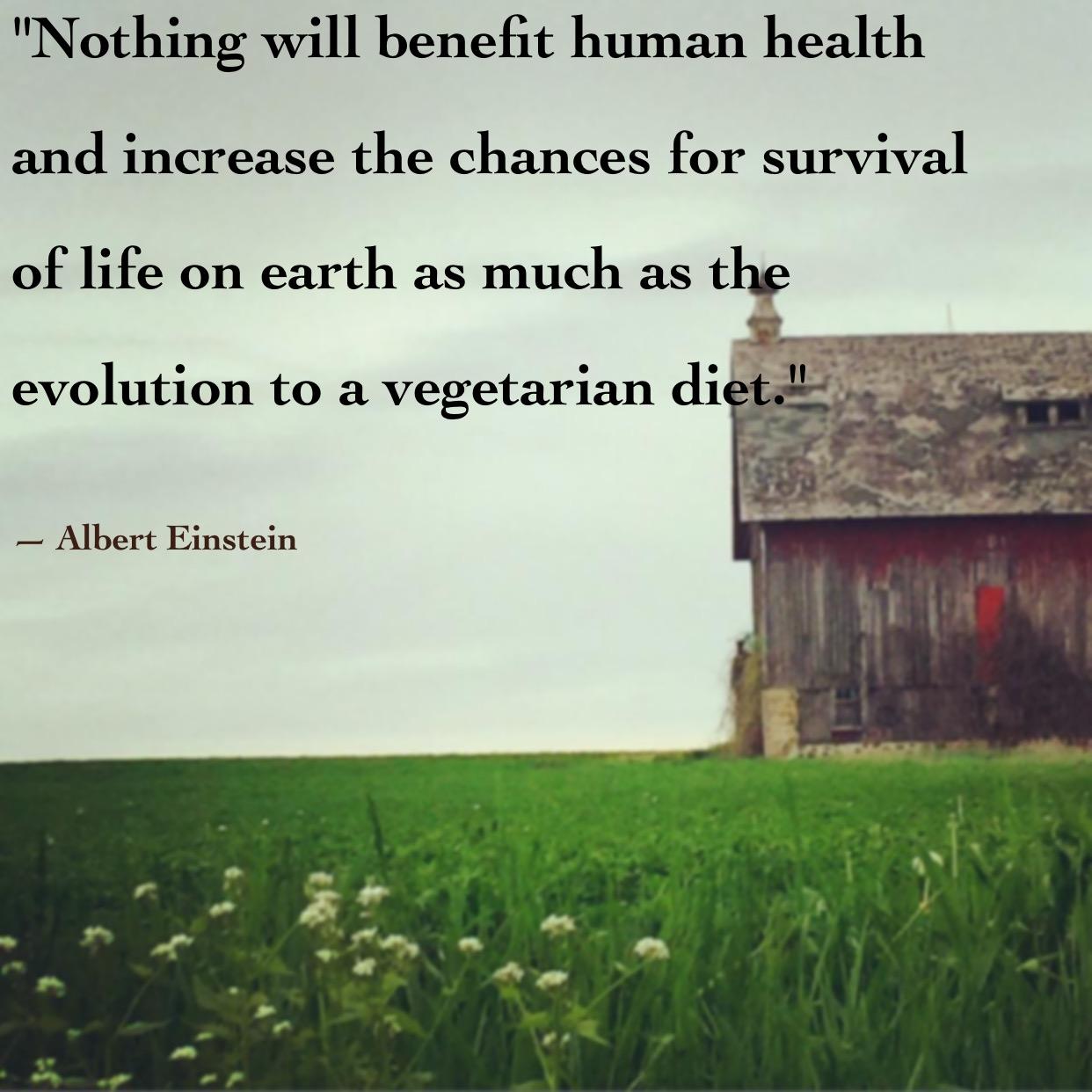 Albert Einstein quote about the evolution to vegetarianism