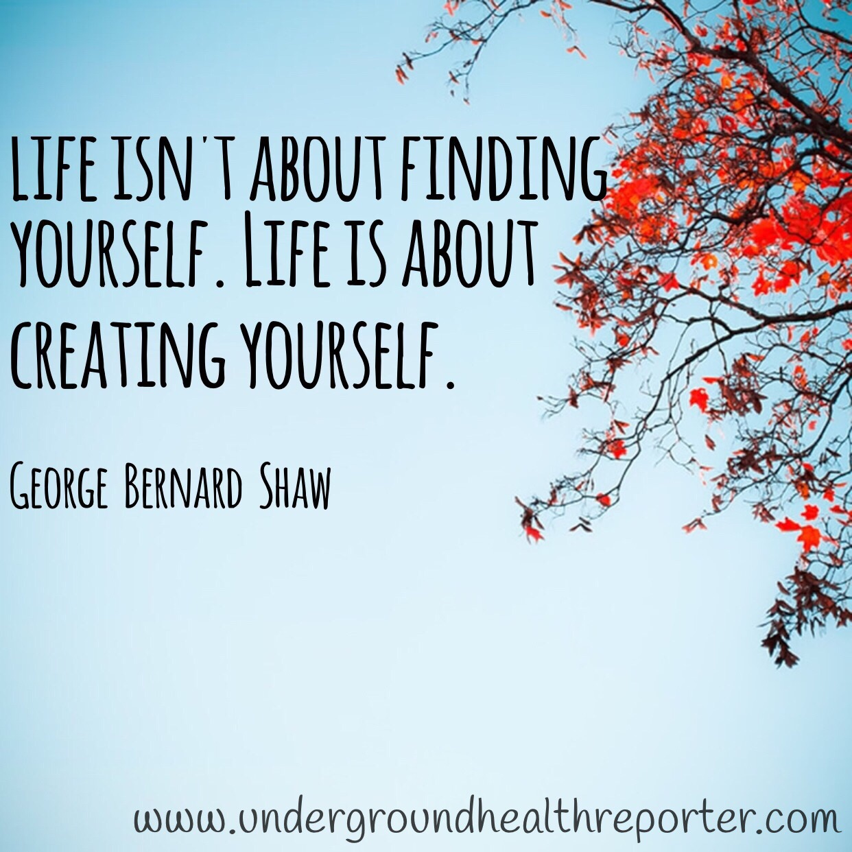 """George Bernard Shaw said: """"Life is about creating yourself"""""""