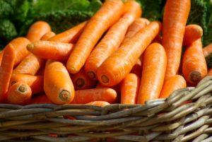 carrots_medium