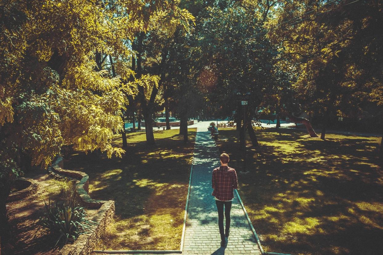 man walking on a paved path through a park