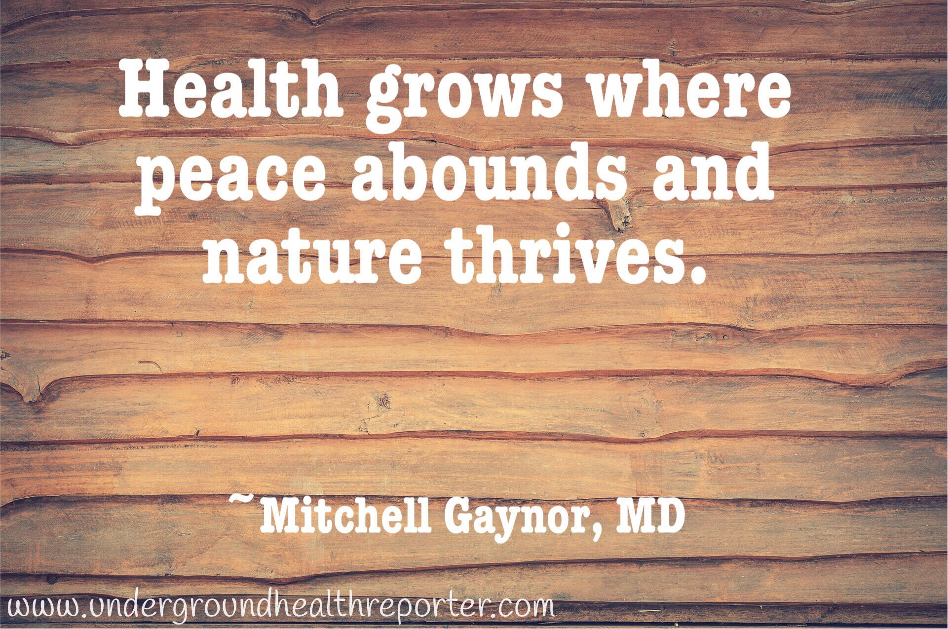Mitchell Gaynor, MD quote