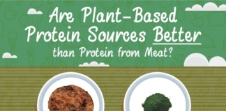 Are plant-based protein sources better