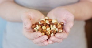 hands cupped and holding hazelnuts