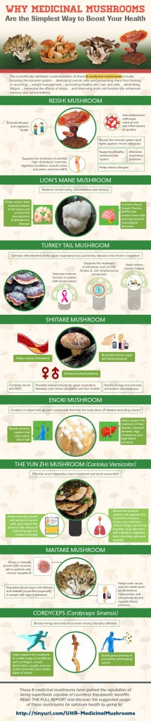 Infographic about 8 medicinal mushrooms that will boost health