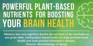 infographic thumbnail - powerful plant-based nutrients for boosting your brain health