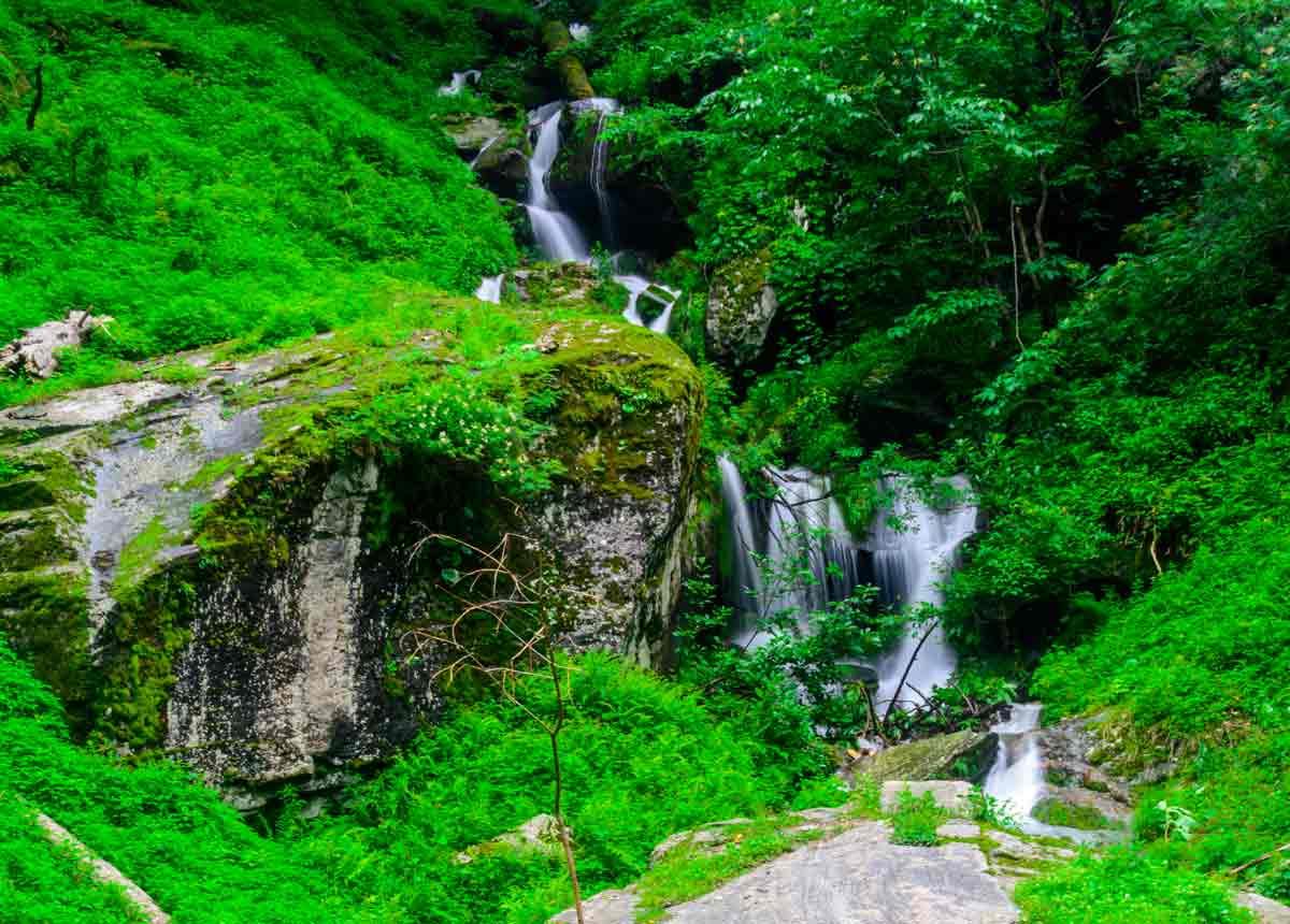 green-forest-waterfall_medi