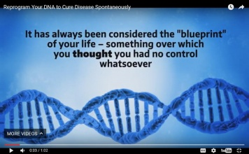Program Your DNA