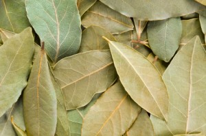 bay leaf uses