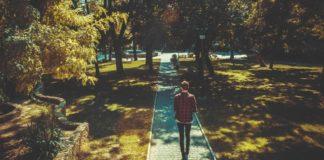 man walking an a walkway through a park