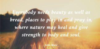 John Muit Quote