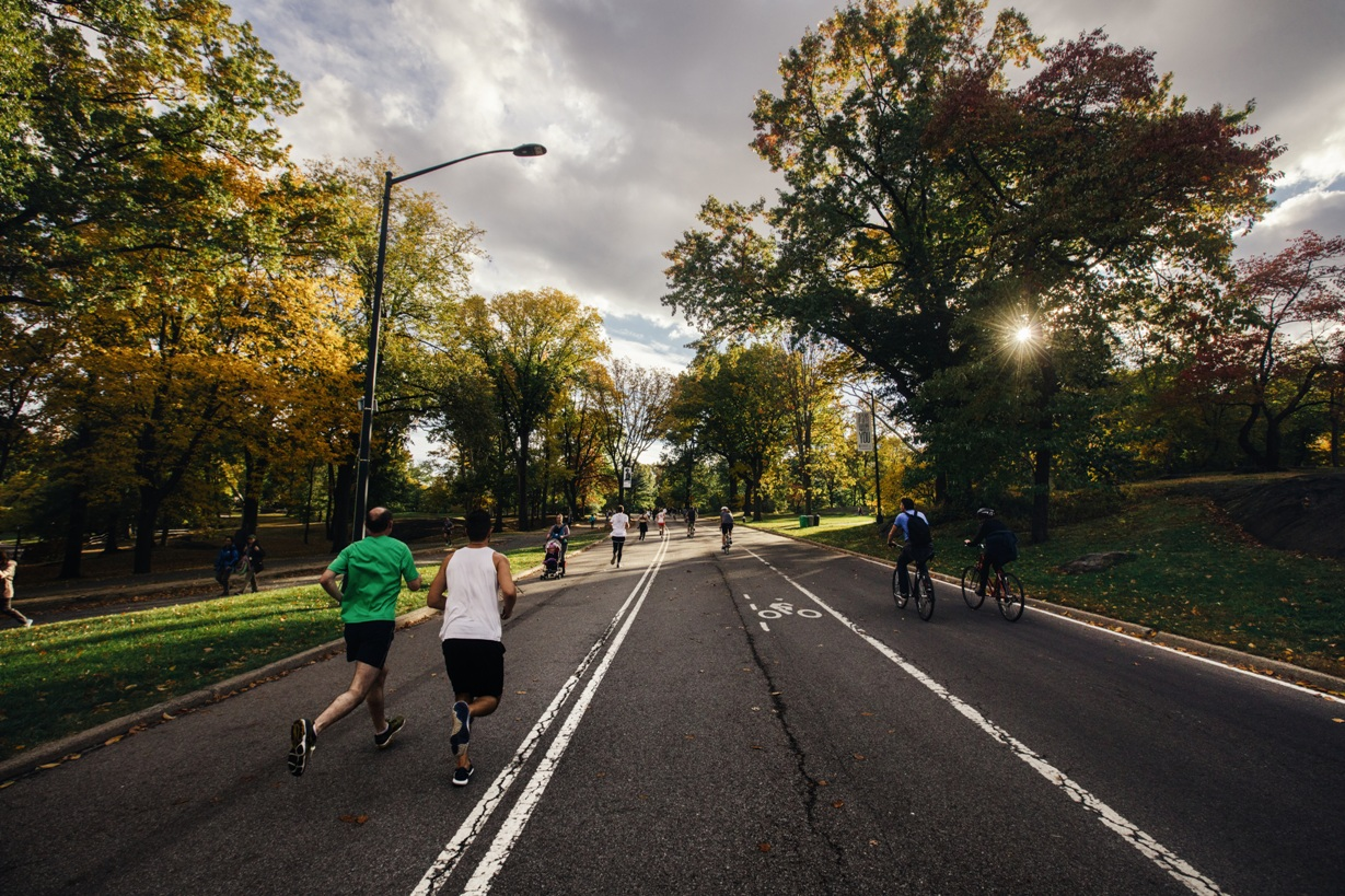 people jogging and biking on a scenic roadway