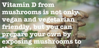 Paul Stamets quote about vitamin D from mushrooms