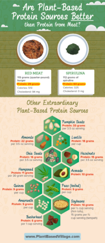 infographic-final-plantbasedproteins-lowresolution