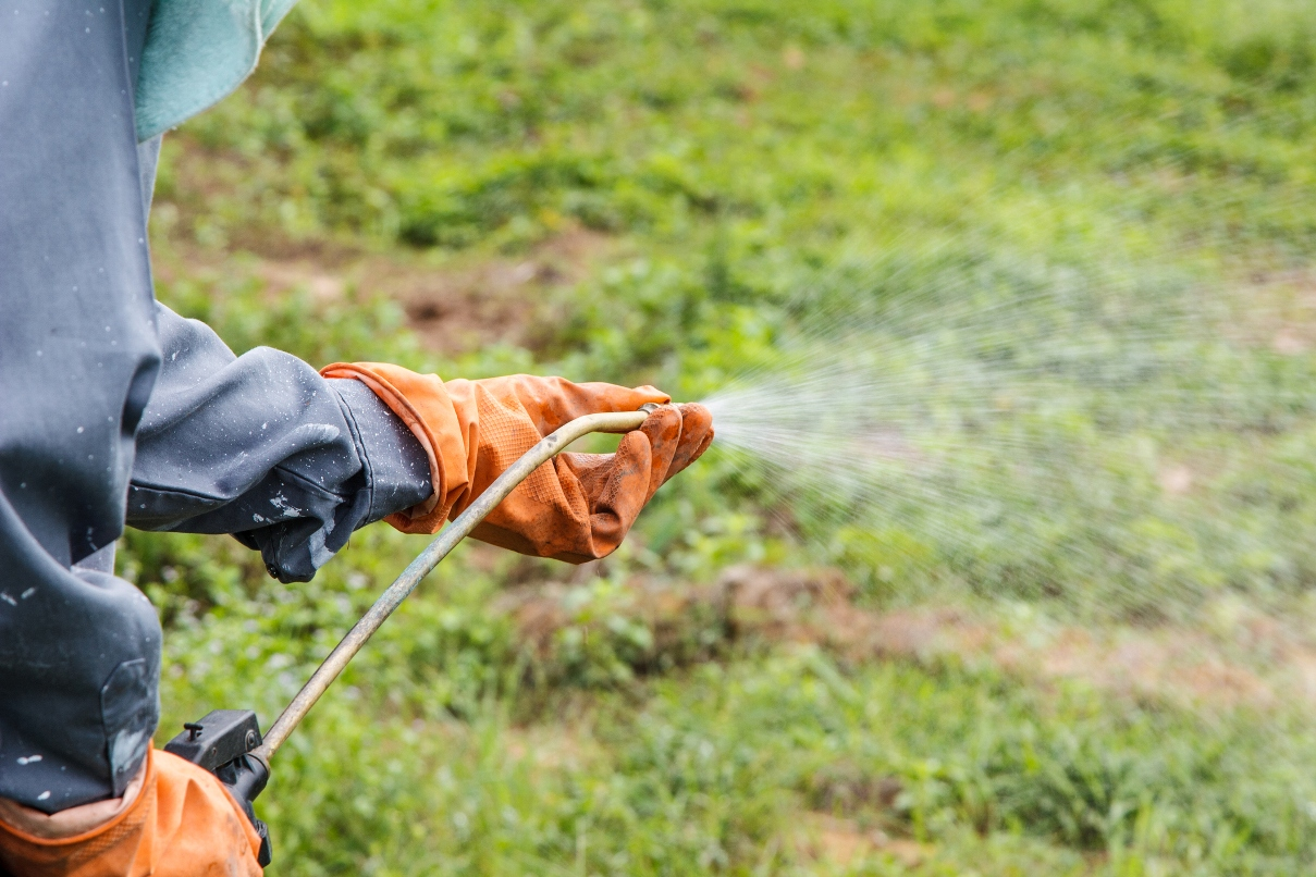 gloved hands spraying pesticides on weeds