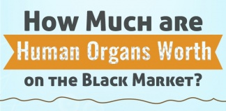 how much are human organs worth on the black market?