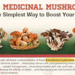 medicinal mushrooms boost your health