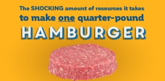 quarter pound hamburger