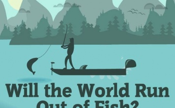 Will the world run out of fish thumbnail