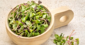 cabbage micro-greens in a wooden bowl