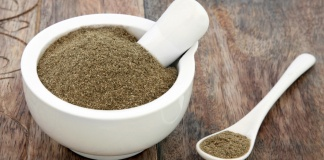 gymnema sylvestre herb in a mortar and pestle