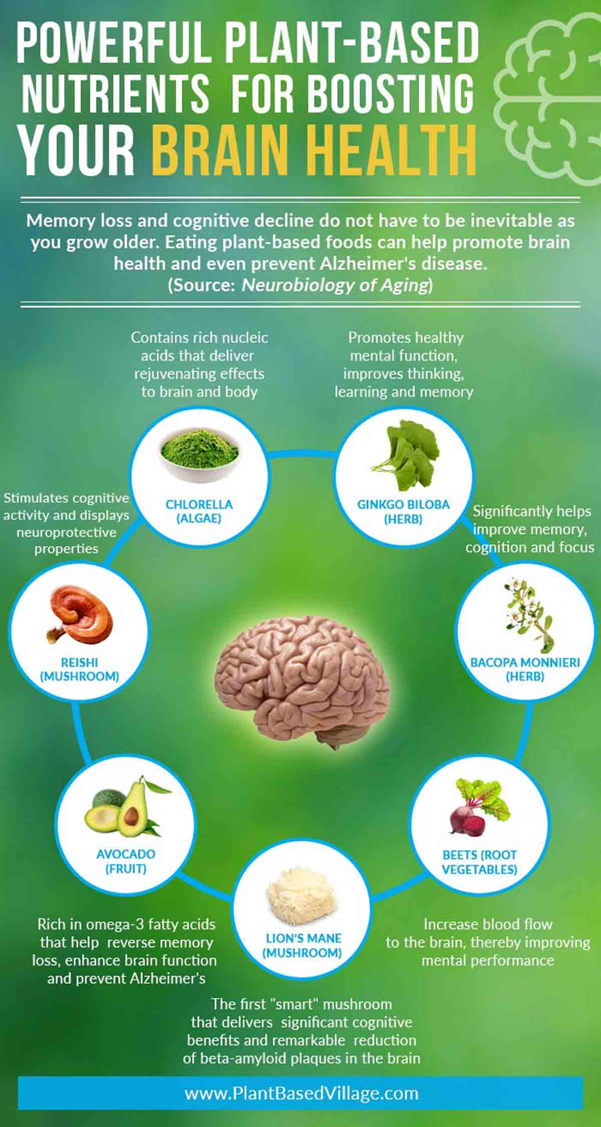 infographic - nutrients for boosting brain health