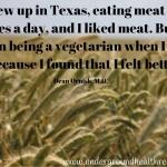 being a vegetarian felt better