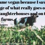 I became a vegan