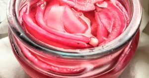 quick-pickled-onions_facebo