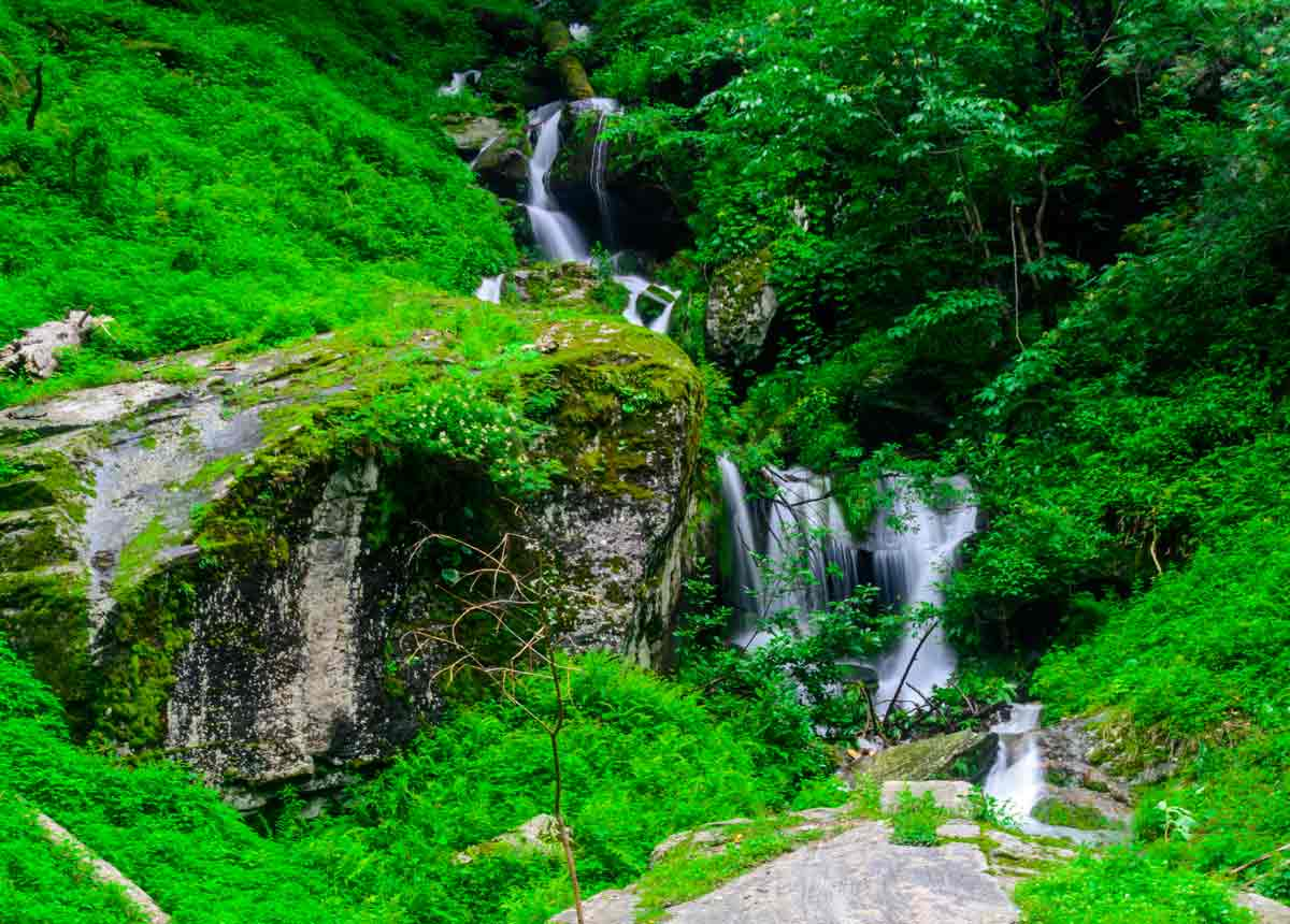 green-forest-waterfall_medi