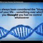 Program Your DNA