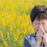 boy standing in a field of flowers sneazing